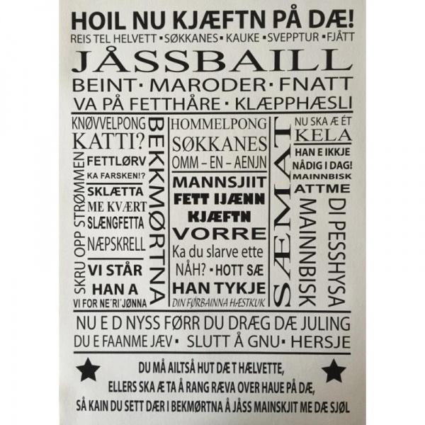 norske ord på dansk