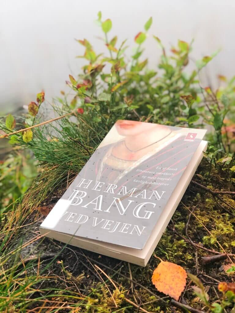 Herman Bang, Ved vejen